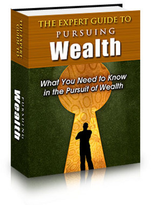 Pay for The Expert Guide to Pursuing Wealth