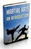 Thumbnail Martial Arts An Introduction