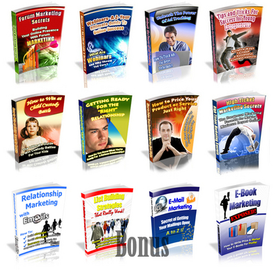 Pay for Hot Item! 8 PLR Ebook Package Plus Bonus 4 PLR E-book!