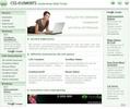 Thumbnail CSS-Content-Projekt mit Adsense-Verdienst