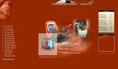 Thumbnail Cyber SMS Flirt Portal