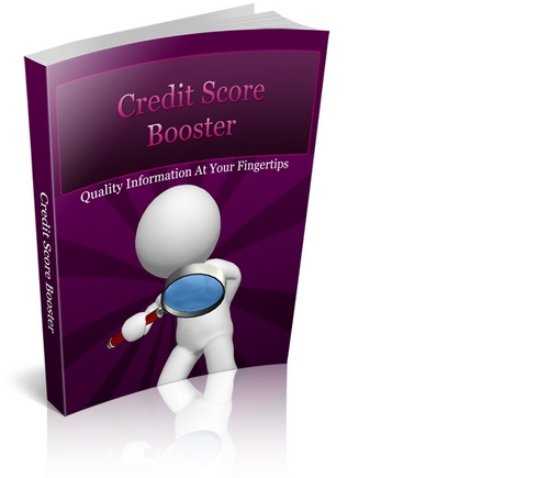 Pay for Credit Score Booster