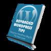 Thumbnail Advanced WordPress Tips