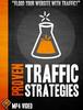 Thumbnail Proven Traffic Strategies Video Tutorial