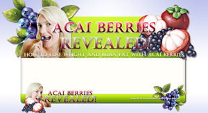 Thumbnail Acai Berries Revealed PSD Minisite HTML Graphics Ready Made Web Template