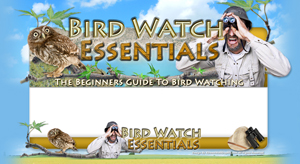 Thumbnail Bird Watch Essentials PSD Minisite HTML Graphics Ready Made Web Template