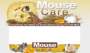 Thumbnail Mouse Care PSD Minisite HTML Graphics Ready Made Web Template