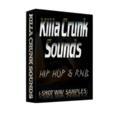 Thumbnail Hip Hop Crunk SYNTHS Sound Wav Sample Pack-Reason,Fl Studio