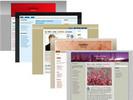 Thumbnail 100 Exclusive Wordpress Themes