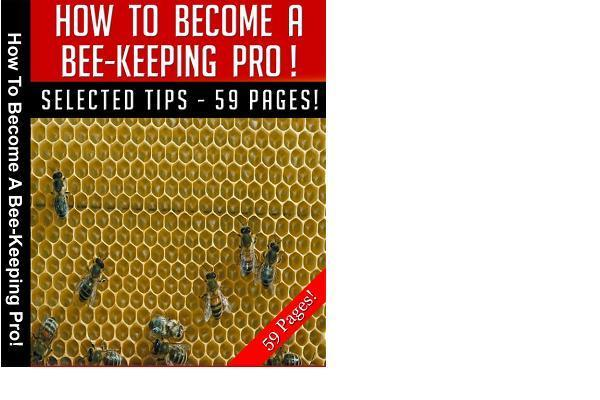 Pay for Beekeeping Secrets