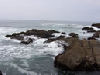 Thumbnail Pacific Tidepool Sounds for Relaxation and Meditation MP3