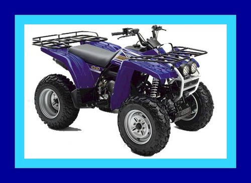 Yamaha Wolverine 350 Atv Repair Service Manual