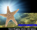 Thumbnail Travel Blog Articles With Spinner