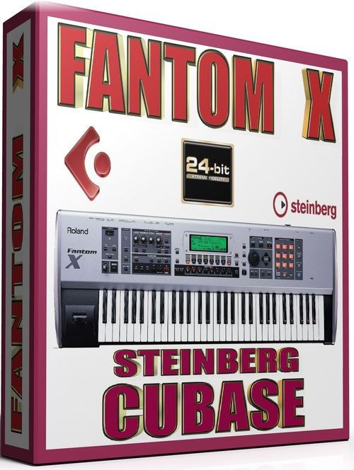 Pay for ROLAND FANTOM X SAMPLES STEINBERG HALION FXP 25GB *24-BIT*