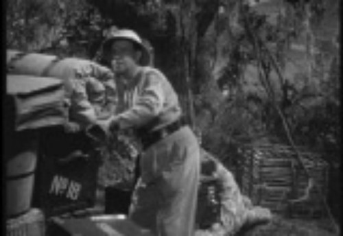 Pay for Africa Screams (1949)
