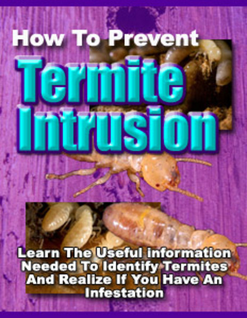 Pay for Termite Intrusion (Private Label Rights)