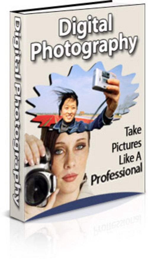 Pay for Digital Photography (PLR)
