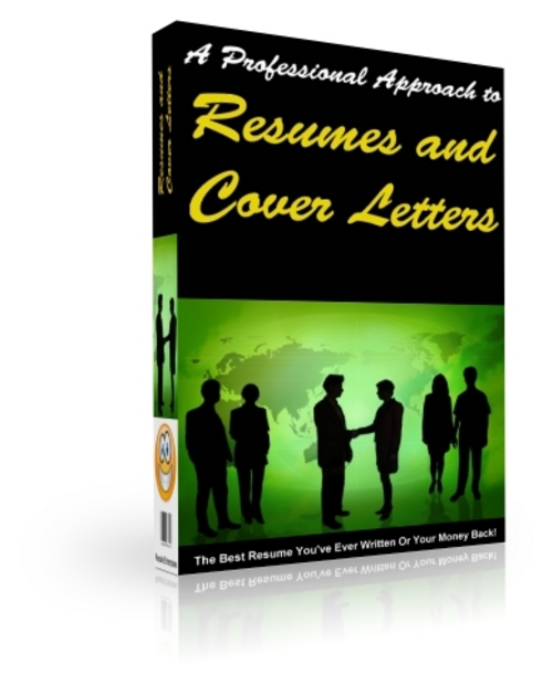 Pay for A Professional Approach to Resumes and Cover Letters (PLR)