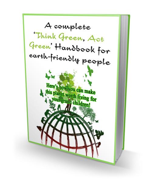 Pay for Think Green Act Green Handbook