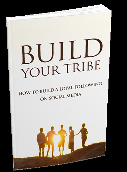 Pay for Build Your Tribe: How To Build Your Social Media Success