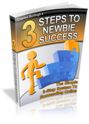 Pay for 3 steps to newbie success - how to make money