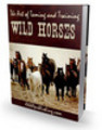 Thumbnail *NEW*The Art of Taming and Training Wild Horses (PLR)