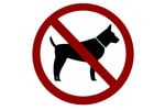 Thumbnail No dogs sign