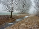 Thumbnail Icy flow