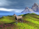 Thumbnail Horse on meadow