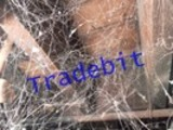 Thumbnail Scary Webs on Basement Rafters