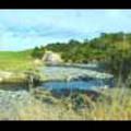 Thumbnail Royalty Free Stock Footage: River: NL00011