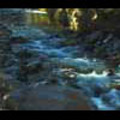 Thumbnail Royalty Free Stock Footage: New Zealand Stoney River: NL00012