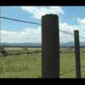 Thumbnail Royalty Free Stock Footage: New Zealand Farmland: NL00032
