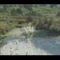 Thumbnail Royalty Free Stock Footage: New Zealand Scenery: NL00038
