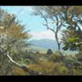 Thumbnail Royalty Free Stock Footage: New Zealand Scenery: NL00039