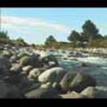 Thumbnail Royalty Free Stock Footage : New Zealand : NL00046