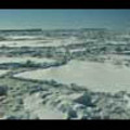 Thumbnail Royalty Free Stock Footage: Antarctica: NL00190
