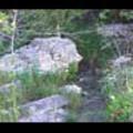 Thumbnail Royalty Free Stock Footage: Stream: NL00540