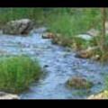 Thumbnail Royalty Free Stock Footage: Stream: NL00541