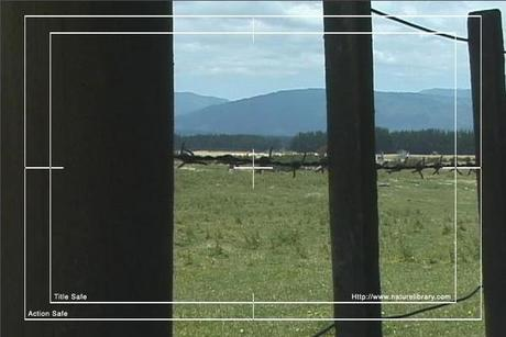 Pay for Royalty Free Stock Footage: New Zealand Farmland: NL00033