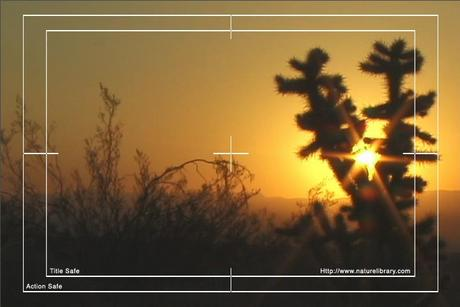 Pay for Royalty Free Stock Footage: Desert: NL00096