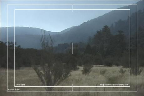 Pay for Royalty Free Stock Footage: New Zealand: NL00100