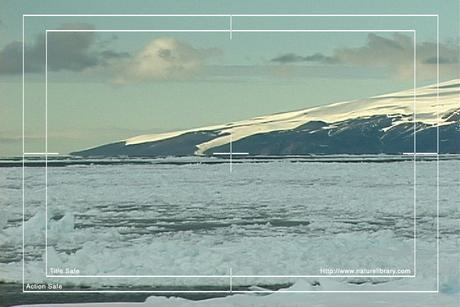 Pay for Royalty Free Stock Footage: Antarctica: NL00123