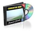 Thumbnail Natural Sounds: Torrential Rain - Royalty Free MP3