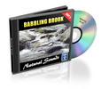 Thumbnail Natural Sounds: Babbling Brook - Royalty Free MP3