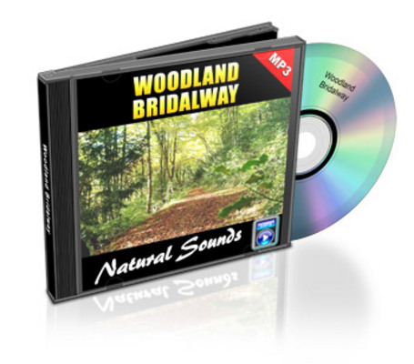 Pay for Natural Sounds: Woodland Bridalway - Royalty Free MP3