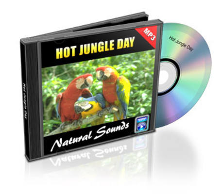 Pay for Natural Sounds: Hot Jungle Day - Royalty Free MP3