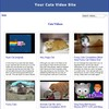 Thumbnail Cats Video Site Builder Tool