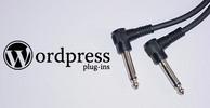 Thumbnail Lead Data Management Plugin For WordPress