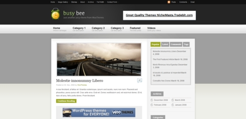 Pay for Busybee Premium Wordpress Theme